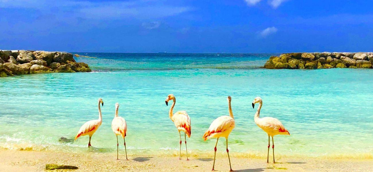 ARUBA, one happy island